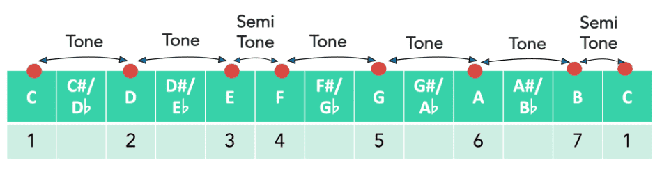 Tonic fretboard note intervals music theory